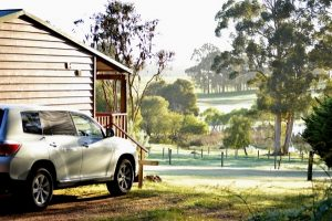 Southern Forest Farm Stay and Chalets