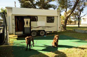 Pet friendly holidays Pemberton WA Farm Stay